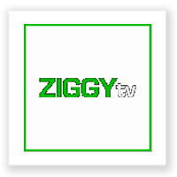 ziggy-tv
